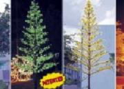 Svjetleca stabla 3